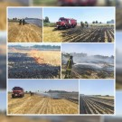 اطفای حریق ۷ هکتار از اراضی کشاورزی شهرستان قدس