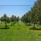 آغاز عملیات انتقال پساب تصفیه خانه فاضلاب جهت آبیاری فضای سبز