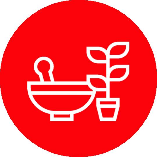 انواع داروهای گیاهی شهر قدس